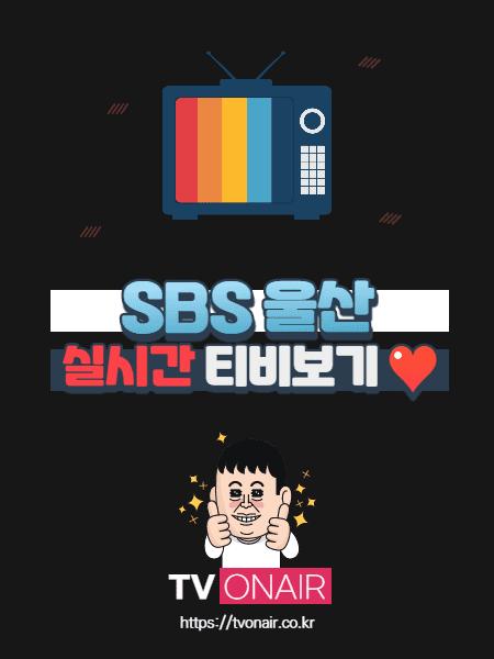 SBS 울산 무료 실시간TV 보기